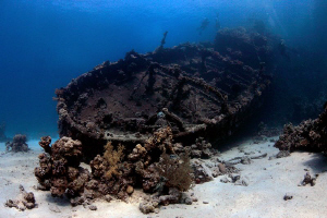 Wreck of the Tug Boat - Red Sea - Egypt. by Jim Garland